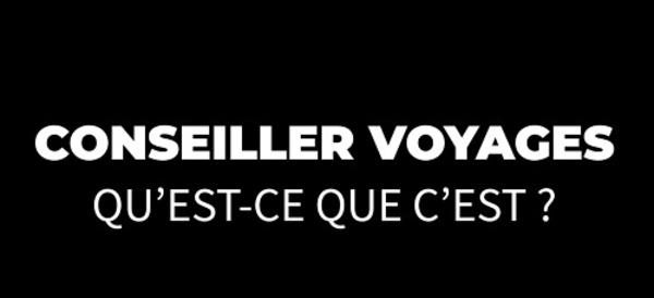 #sauvonslesagencesdevoyages : Bleu Voyages s'adresse à ses clients (Vidéo)