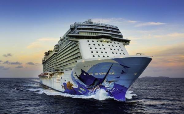 Norwegian Cruise Line : webinaire jeudi 5 novembre pour les agents de voyages