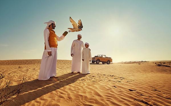 Chroniques d'Abu Dhabi