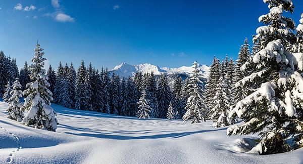 Envie d'air pur cet hiver ? Les Alpes françaises vous offrent ressourcement et bien-être
