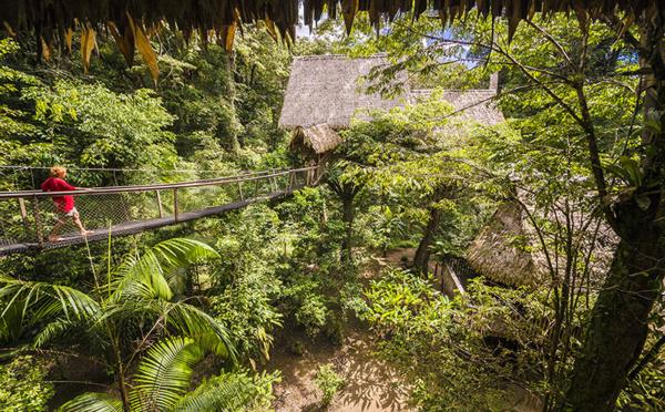 L'éveil des sens au cœur de l'Amazonie