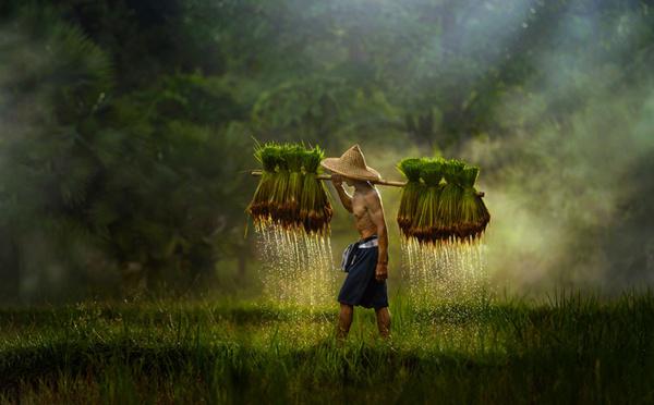 Relais d'Asie, donnez du sens à vos voyages