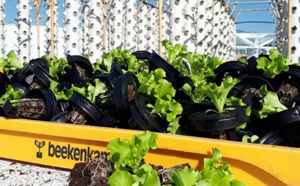 Evènementiel : Nature Urbaine rouvre ses portes le 1er avril sur le toit de Paris Expo