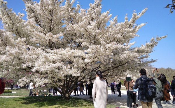 FUTUROSCOPIE -  Le spectacle de la nature, des arbres et des plantes, prend racine dans le tourisme...