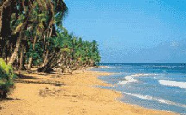Exclusivité Marsans : l'hôtel Punta Bonita à Las Terrenas