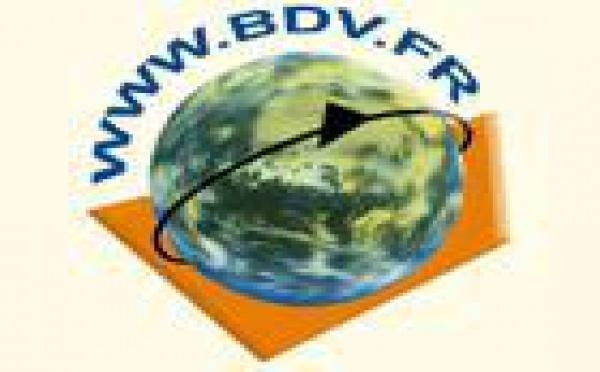BDV : Google condamné pour contrefaçon de marque