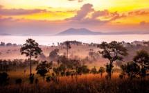 Afrique Authentique sur le haut de la vague !