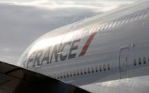 La Case de l'Oncle Dom : Air France au Sénat… à un train de sénateur !