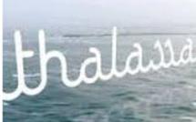 CLIA n'apprécie pas le reportage de Thalassa sur les croisières