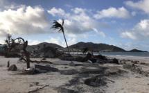 """Ouragan Irma : Lagoon Groupe espère un """"retour des clients à Saint-Martin avant fin 2018"""""""