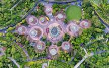 Singapour : nouveau record et perspectives