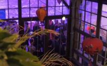 Découvrez Ho Chi Minh ville et le Vietnam authentique le temps d'une soirée