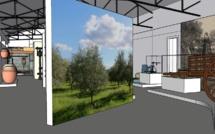 L'histoire, la fabrication et l'utilisation de l'huile d'olive à travers le temps seront déclinées sur un espace de 300 m2 - DR : Musée huile d'olive