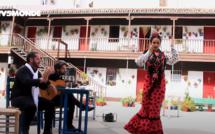 Voyages Vert Vous - Épisode 7 : Andalousie, flamenco, patios et agro-écologie