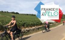 Vignes – © France à vélo