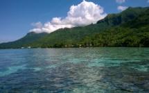 Casting Paradise : deuxième journée en Polynésie !